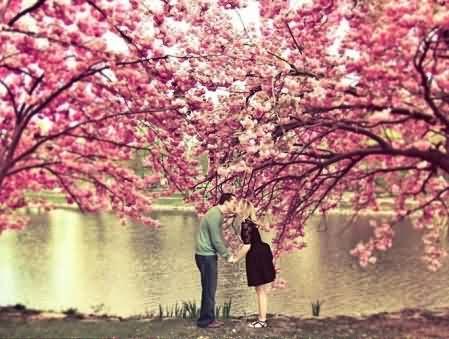【现代小说】木瓜树下的我们:第一章