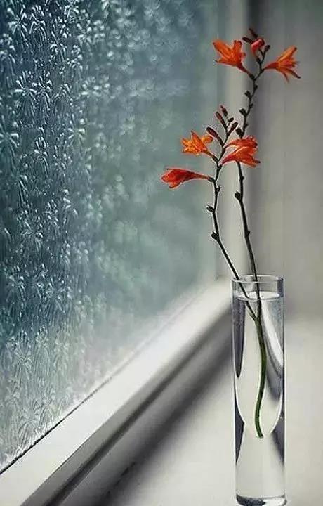 【优美散文】每个人心里都有一扇窗