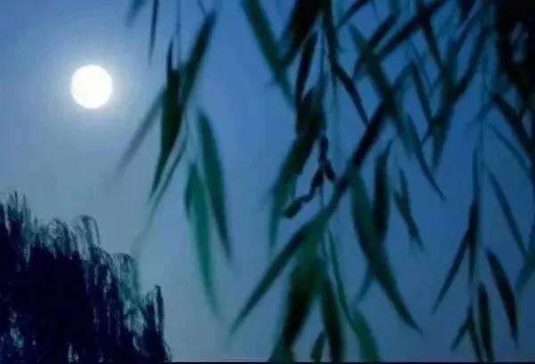 中秋,那一轮圆圆的月亮
