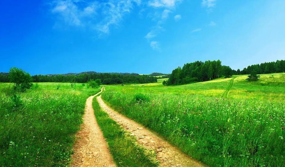 【随笔】一路风景,沿途的你